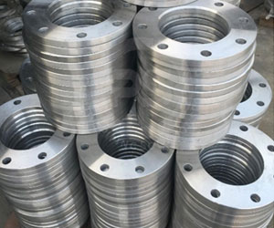 Backing Ring Flange Exporters