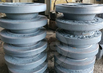 Stainless Steel 304 Flanges Exporters