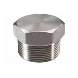 Stainless Steel 310h Threaded Hex Plug